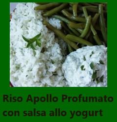 Riso Apollo Profumato con salsa allo yogurt